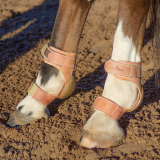 Classic Equine Skid Boots Performance