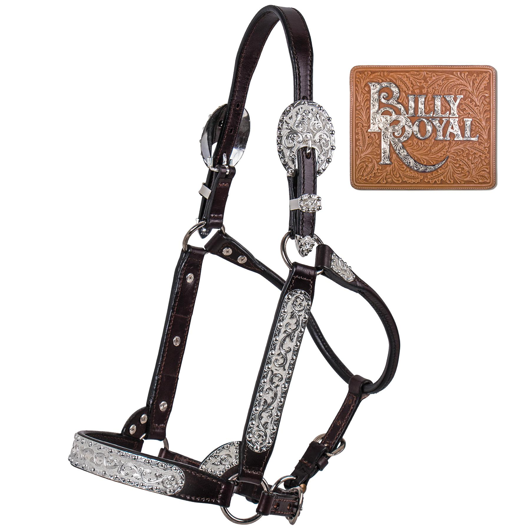 Billy Royal® Pure & Simple Classic Show Halter