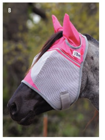 Cashel Fly Mask w/ears (Pink) - ARAB