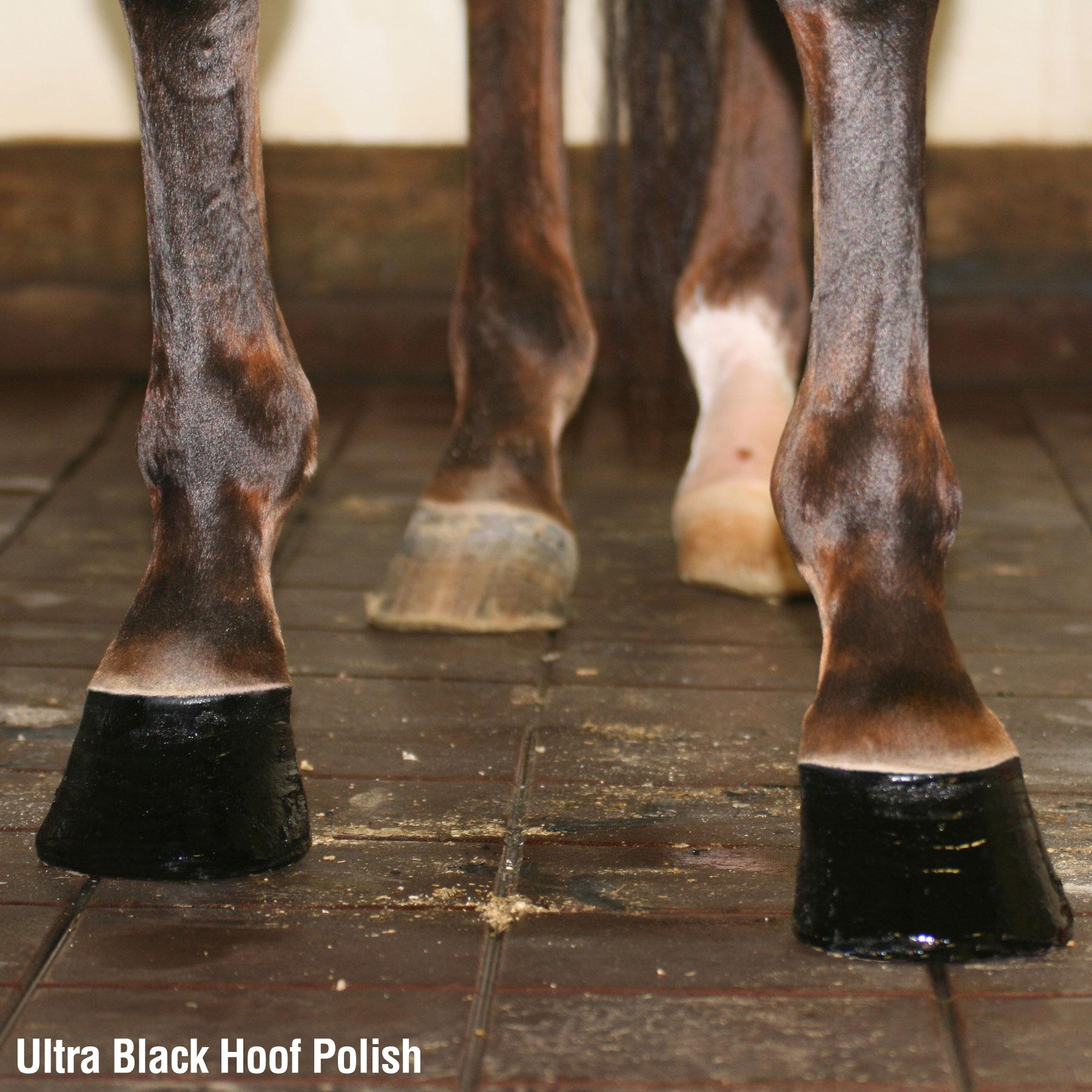 Ultra Hoof Polish Black 200ml