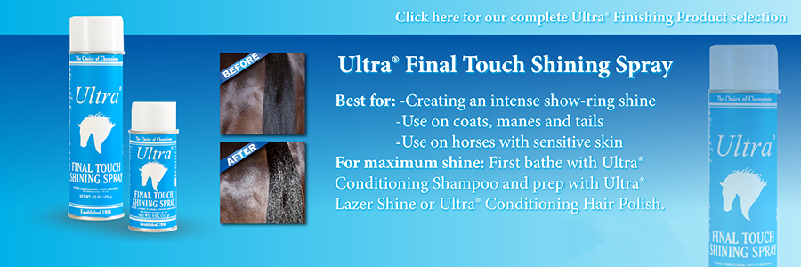 Ultra Final Touch Spray 425g