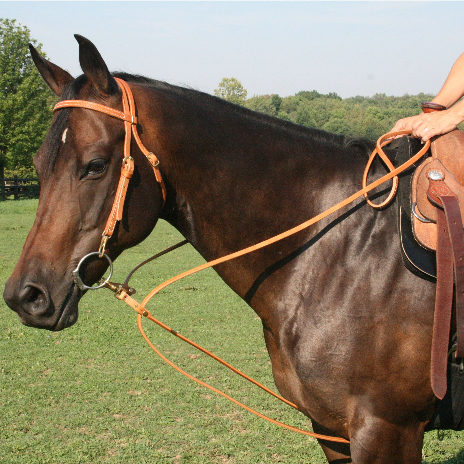 Billy Royal® Harness Leather Pulley Draw Reins