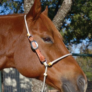 Classic Equine ADJUSTABLE ROPE HEADSETTER TIEDOWN