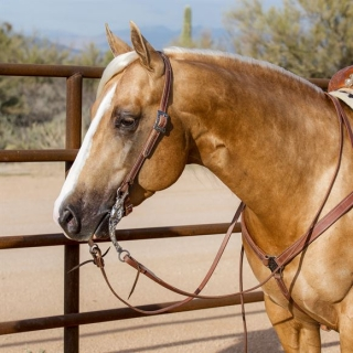 Billy Royal® Oiled Hermann Oak Split Ear Headstall with Horseshoe Brand Buckle