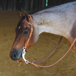 Double S Latigo Lined One Ear Headstall