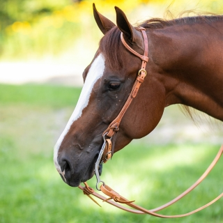 Billy Royal® Hermann Oak Rolled One Ear Headstall